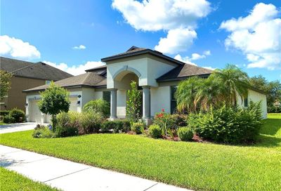 11932 Harpswell Drive Riverview FL 33579