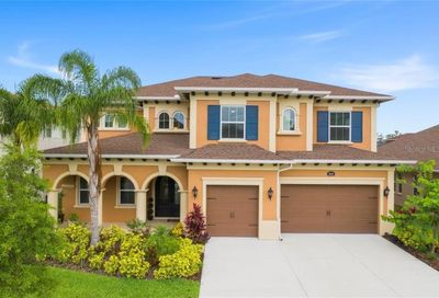 18024 Woodland View Drive Lutz FL 33548