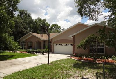 9052 Tree Top Lane Hudson FL 34669