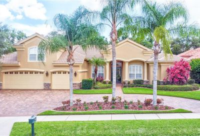 214 Highland Woods Drive Safety Harbor FL 34695