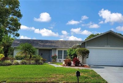 2808 Thistle Court S Palm Harbor FL 34684