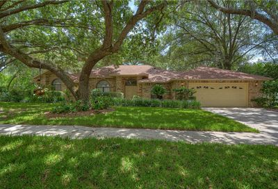 2843 Timber Knoll Drive Valrico FL 33596