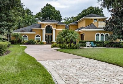 2305 Dovewood Estates Court Valrico FL 33594