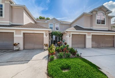 3645 Country Pointe Place Palm Harbor FL 34684