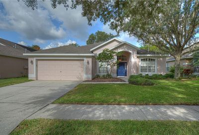5917 Tealwater Place Lithia FL 33547