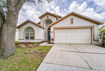 3308 Red Mulberry Court Tampa FL 33618
