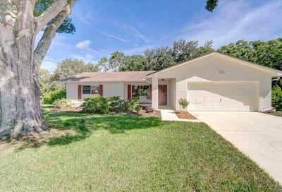 2852 Chalmers Court Palm Harbor FL 34684