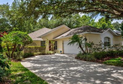 6022 Spring Creek Court Mount Dora FL 32757