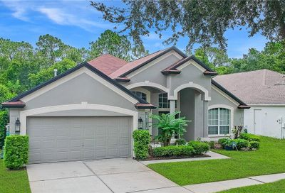5905 Tealwater Place Lithia FL 33547
