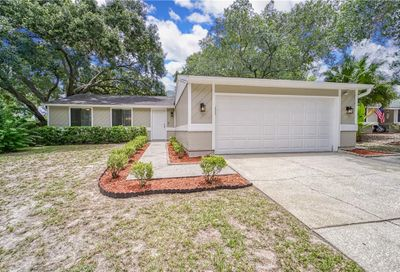 2863 Honey Bear Court Palm Harbor FL 34684