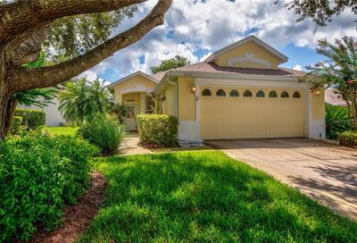 1013 Saint Ives Court Mount Dora FL 32757