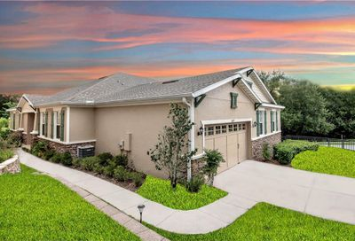 30019 Willow Trace Mount Dora FL 32757