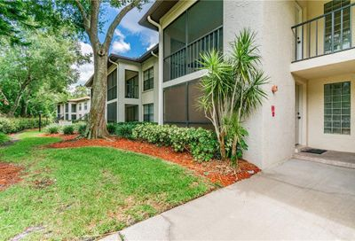 3389 Crystal Court E Palm Harbor FL 34685