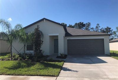 4214 Salt Springs Lane Lakeland FL 33811