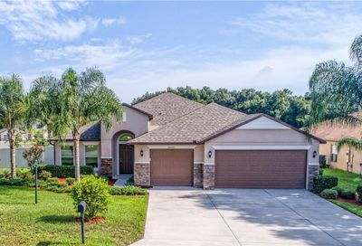 32101 Spring Meadow Ct Sorrento FL 32776
