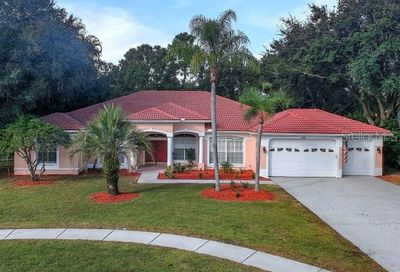 3886 Crescent Cove Place Tarpon Springs FL 34688