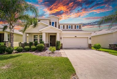 11518 Warren Oaks Place Riverview FL 33578
