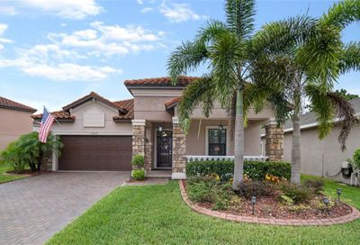 11833 Frost Aster Drive Riverview FL 33579