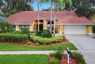 3958 Talah Drive Palm Harbor FL 34684