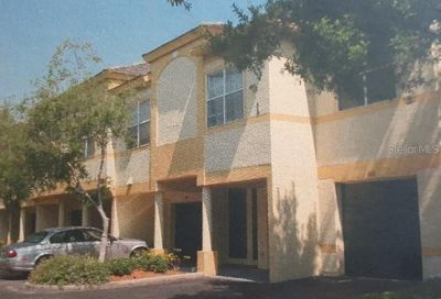 805 Normandy Trace Road Tampa FL 33602