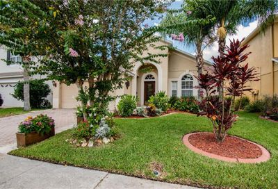 12831 Solola Way Trinity FL 34655