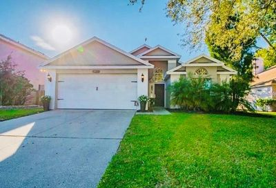 2911 Shannon Circle Palm Harbor FL 34684