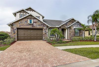 13234 Fawn Lily Drive Riverview FL 33579