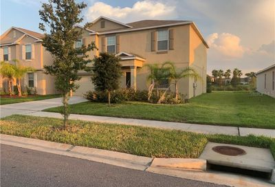 10019 Crested Fringe Drive Riverview FL 33578