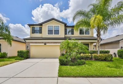 11712 Albatross Lane Riverview FL 33569