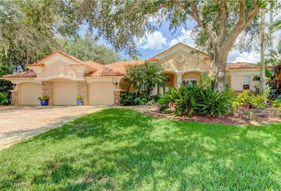 3983 Moreno Drive Palm Harbor FL 34685