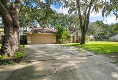 1410 Graywood Court Valrico FL 33596