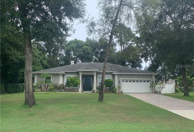 25516 Pine Valley Drive Sorrento FL 32776