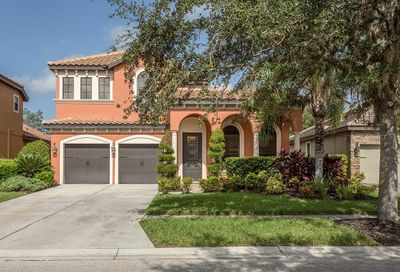 20304 Heritage Point Drive Tampa FL 33647