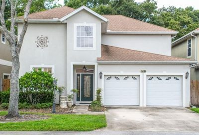 8704 Sleepy Oak Place Tampa FL 33614