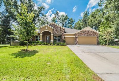 30332 Plymouth Creek Circle Sorrento FL 32776