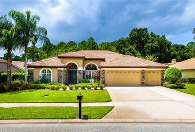 4674 Devonshire Boulevard Palm Harbor FL 34685