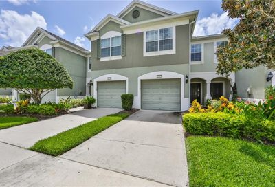 10207 Red Currant Court Riverview FL 33578