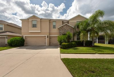 12216 Streambed Drive Riverview FL 33579