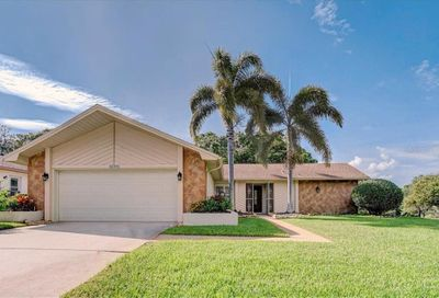 1693 Macdonnell Court Palm Harbor FL 34684