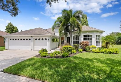10413 Snowden Place Tampa FL 33626