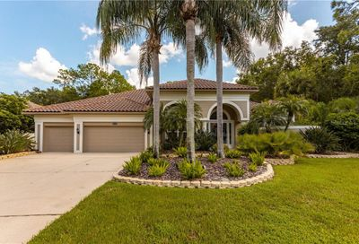 4919 Turtle Creek Trail Oldsmar FL 34677