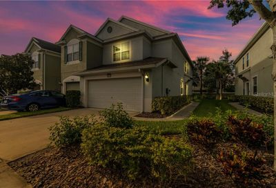 10228 Red Currant Court Riverview FL 33578