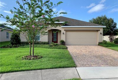 34407 Alicante Court Sorrento FL 32776