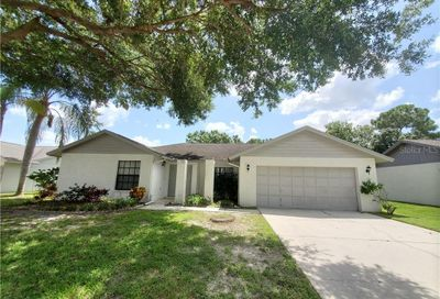 3226 Oakwood Place Tarpon Springs FL 34688