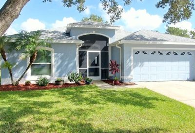 3943 Windchime Lane Lakeland FL 33811