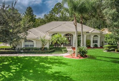 5650 Stag Thicket Lane Palm Harbor FL 34685