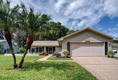 1636 Kilwinning Court Palm Harbor FL 34684