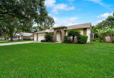 3803 Castle Key Lane Valrico FL 33594