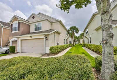 10221 Red Currant Court Riverview FL 33578
