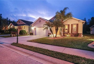 1434 Halapa Way Trinity FL 34655